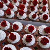 cupcakes-00